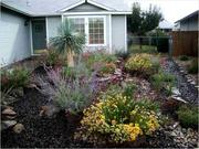 Landscape Maintenance and Yard Cleanup