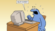 How To Clear Cookies on Chrome! @8554228557